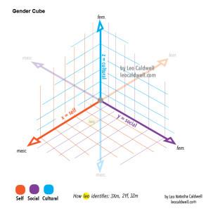 gendercube